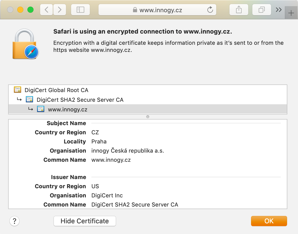 Display of DigiCert Secure Site Pro Wildcard in the browser